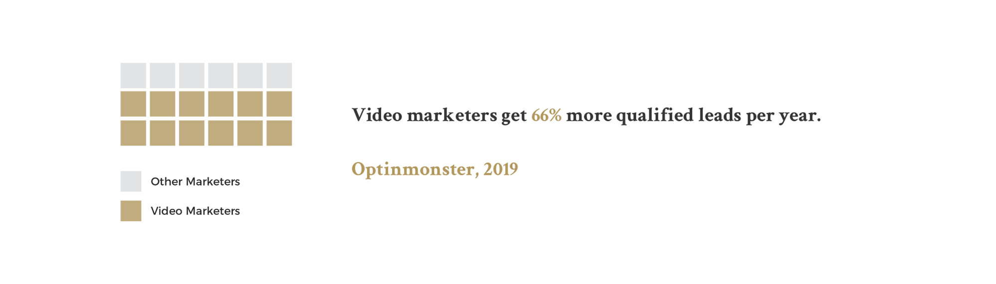 Video marketers stats